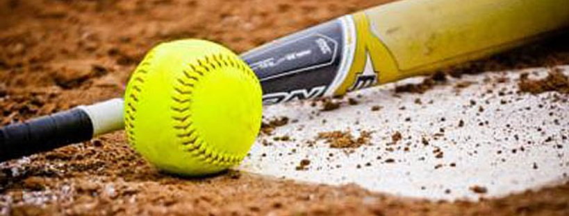 Bring A Friend With You To Play Softball