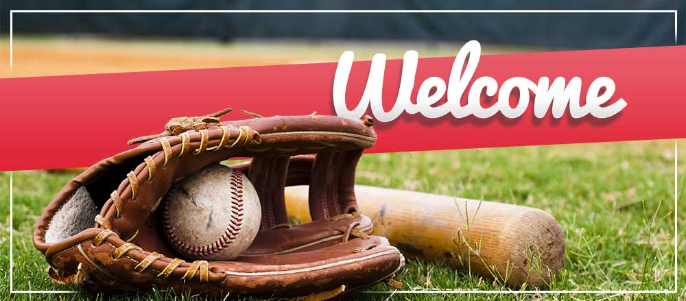 Online Registration is now OPEN for Fall Baseball!